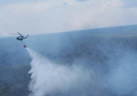 Al menos siete incendios forestales continúan activos en Petén. (Foto Prensa Libre: EFE)