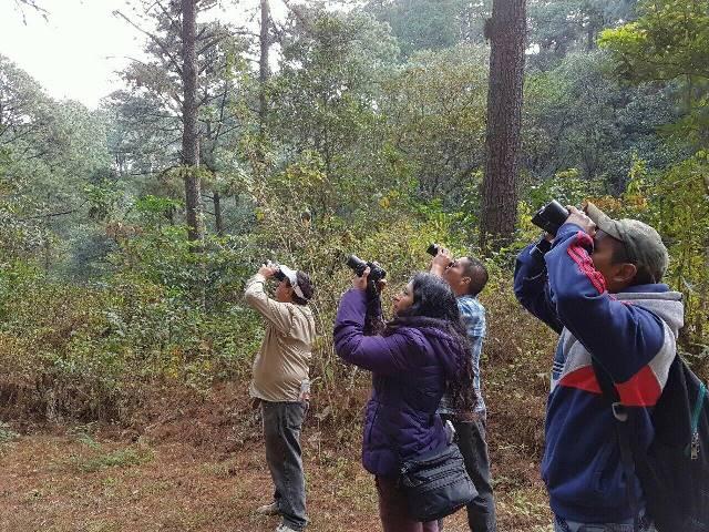 (Foto Prensa Libre: Parque Ecológico Kanajuyú)