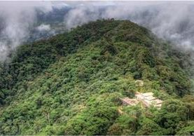 Un hotel de lujo en un bosque tropical de Ecuador. (Foto Prensa Libre: Mashpi Lodge)