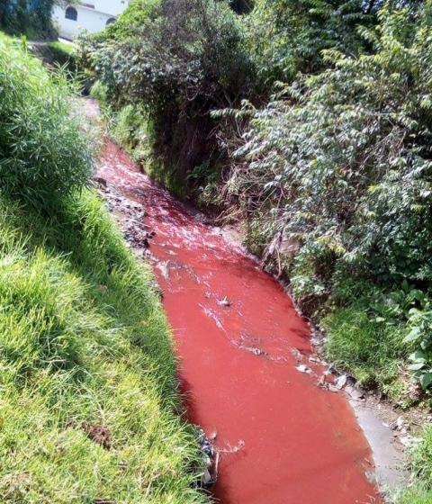 Vecinos de la zona 8 de Quetzaltenango denunciaron la contaminación del río Seco. (Foto Prensa Libre: Carlos Ventura)