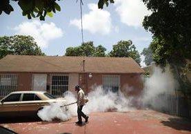Un salubrista fumiga contra el Aedes aegypti, en Miami. (Foto Prensa Libre: EFE)