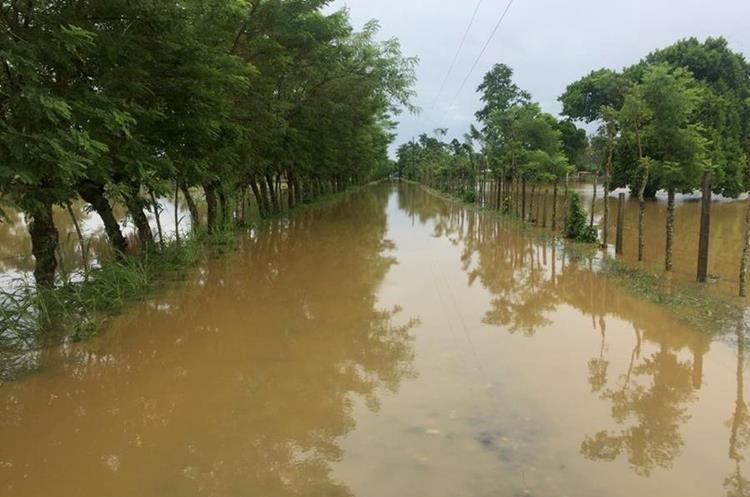 La carretera hacia la aldea Cacao Frontera en Puerto Barrios, Izabal, permanece inundada por el desborde del río Champas. (Foto Prensa Libre: Dony Stewart)