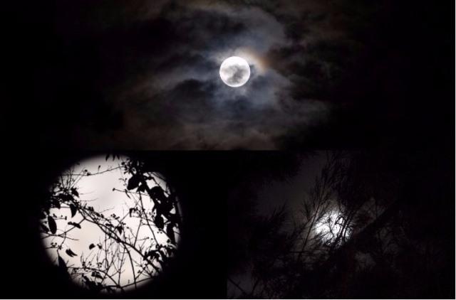 La superluna se podrá apreciar el domingo 3 y lunes 4 de diciembre. (Foto Prensa Libre: Keneth Cruz)