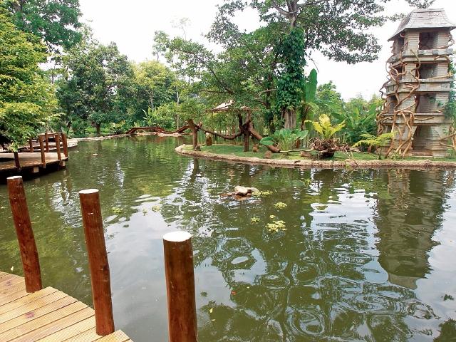 En el parque hay una laguna, en la que los visitantes pueden pescar. Al fondo, una torre en la que habrá monos. (Foto Prensa Libre: Estuardo Paredes)