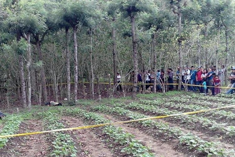 Los cadáveres se encontraban entre unos cafetales en el cantón Paguacal de la aldea Cerro de Oro, de Santiago Atitlán, Sololá. (Foto Prensa Libre: Ángel Julajuj)