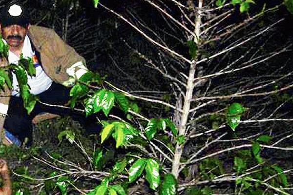 Autoridades   consideran  que el crimen, en  Santiago Atitlán, Sololá, ocurrió la noche del miércoles último. (foto Prensa Libre: Ángel Julajuj).