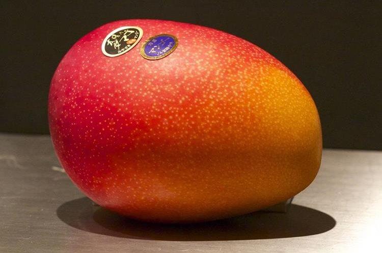 US$3,650 pagaron en una subasta por dos mangos de la variedad Taiyo no Tamago.