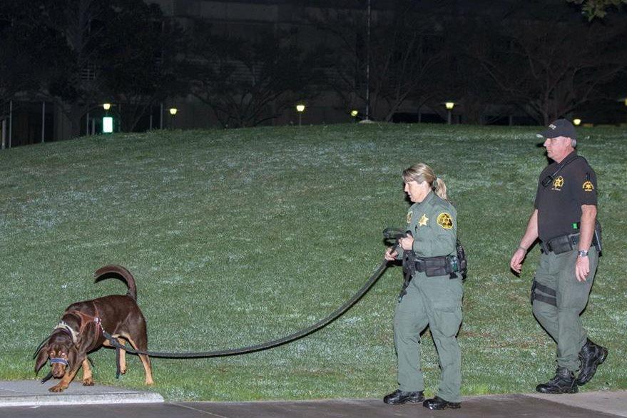 Un perro entrenado olfatea algún rastro que permita dar con los reos fugados. (Foto Prensa Libre: AP).