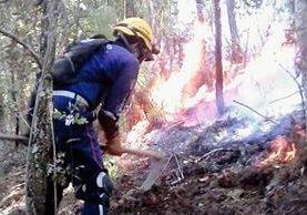 Bombero combate incendio forestal en Chichicastenango, Quiché. (Foto Prensa Libre: Óscar Figueroa)