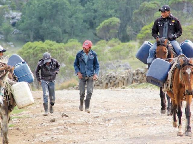 Pobladores de varias comunidades de Los Cuchumatanes, Huehuetenango, deben recorrer largas distancias en busca de agua. (Foto Prensa Libre: Mike Castillos)