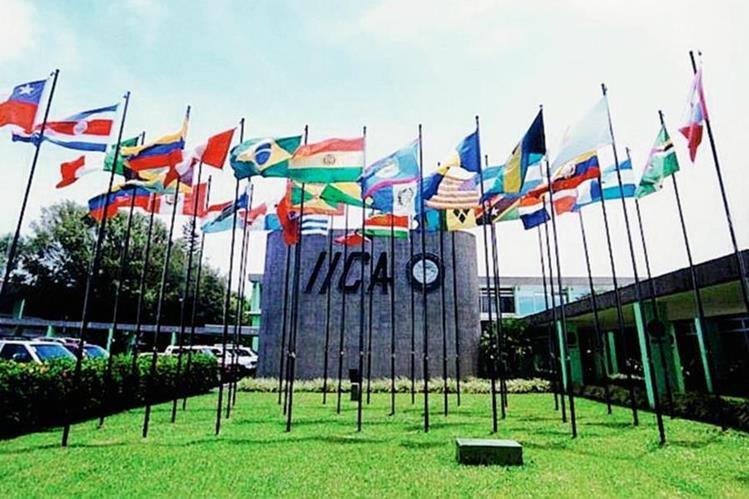 El Comité Ejecutivo del 2015 está compuesto por delegados agrícolas de 10 países. (Foto: Prensa Libre: Hemeroteca PL)