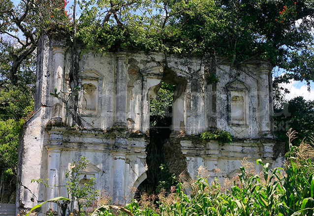 La iglesia de Santa Inés Petapa, otrora una rica iglesia barroca, permanece de pie entre la maleza. (Foto: Hemeroteca PL)