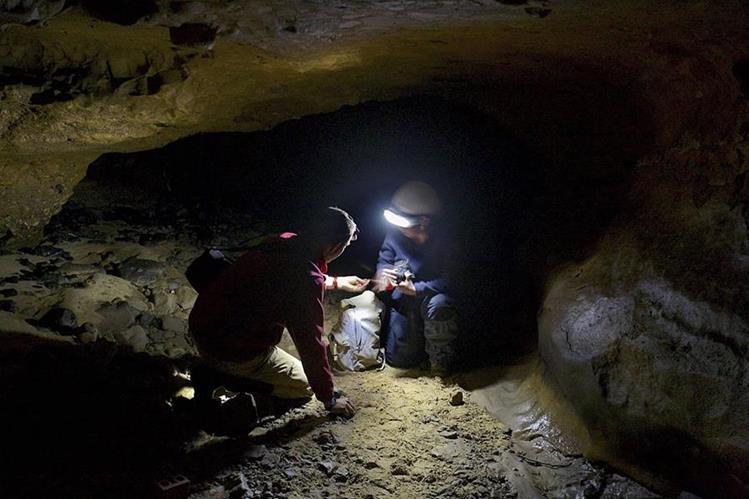 Los avances científicos también han trascendido a la paleontología (Foto Prensa Libre: EFE).