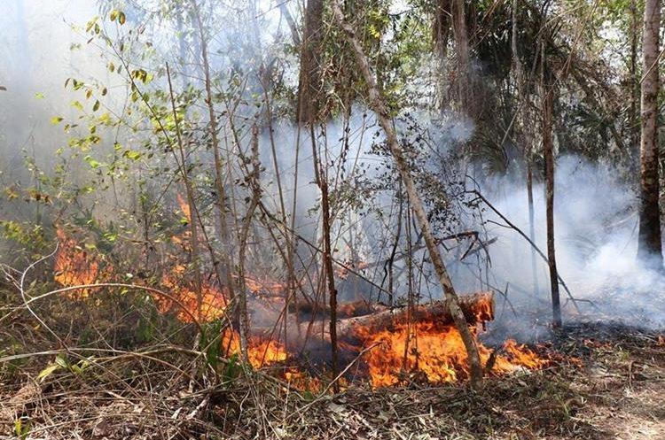Prensa Libre llegó hasta el área donde se están propagando los incendios. (Foto Prensa Libre: Rigoberto Escobar)
