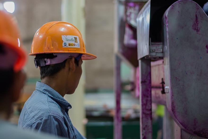 La planta cuenta con más de cinco equipos. (Foto Prensa Libre: Cortesía FAO)