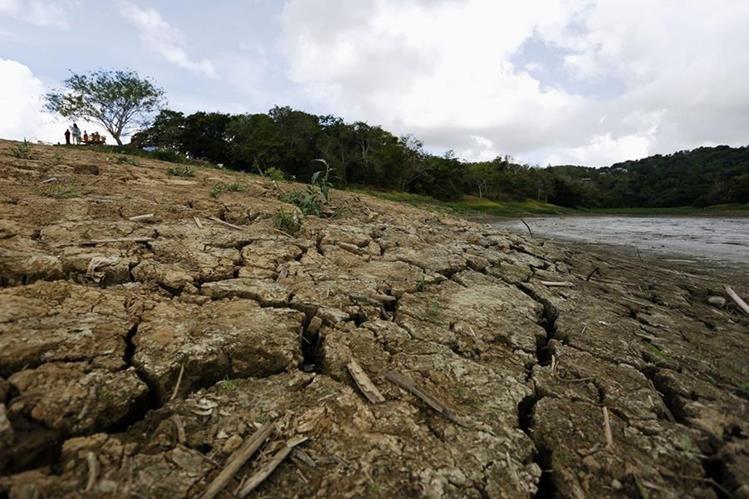 La sequía afectó principalmente en el corredor seco, al oriente del país. (Foto Prensa Libre: Hemeroteca PL)
