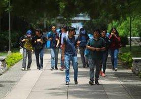 Unas 12 mil personas se espera que se inscriban en los cursos libres que impartirá la Usac a partir del próximo sábado. (Foto Prensa Libre: Hemeroteca)