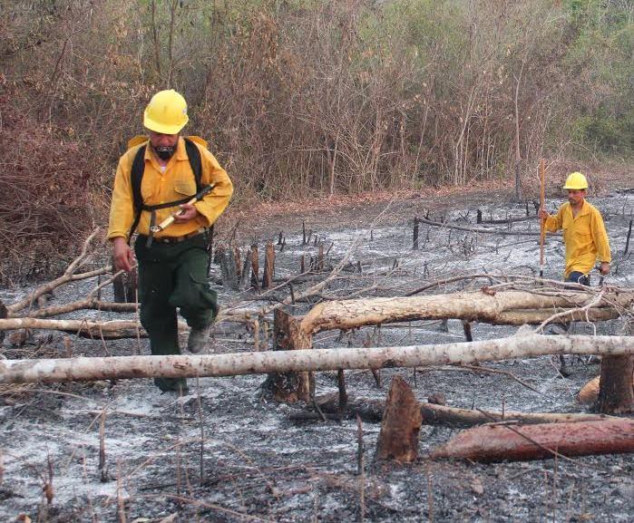 Una de las áreas afectadas por los incendios en el área de la península de Tayazal, ubicada en San Miguel, Flores, Petén. (Foto Prensa Libre: Rigoberto Escobar)