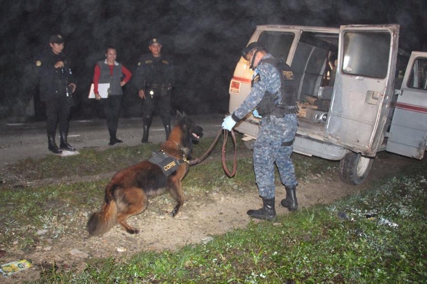 Un perro de la Unidad Canina de la PNC localizó la droga incautada en Dolores, Petén. (Foto Prensa Libre: PNC)
