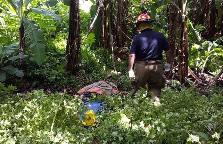 Un bombero municipal de Villa Nueva cubre el cadáver de Manuel Baten, atacado por una colonia de abejas. (Foto Prensa Libre: Asonbomd)