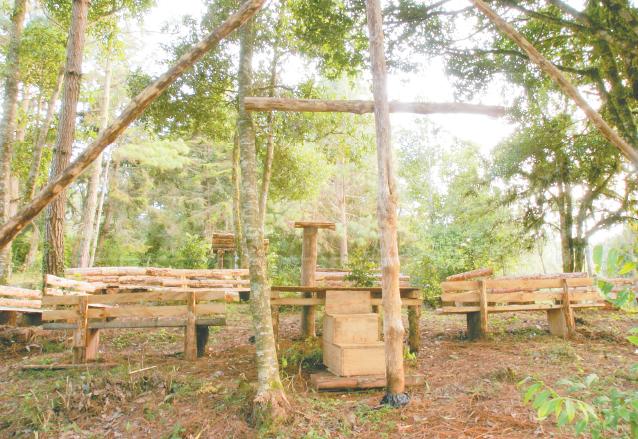 El parque posee mobiliario para que pueda compartir en familia o amigos. (Foto: Hemeroteca PL)
