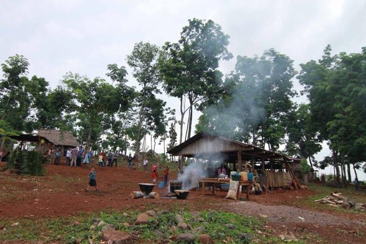 Parte de los terrenos que recuperaron las familias en Panzós, Alta Verapaz. (Foto Prensa Libre: EFE).