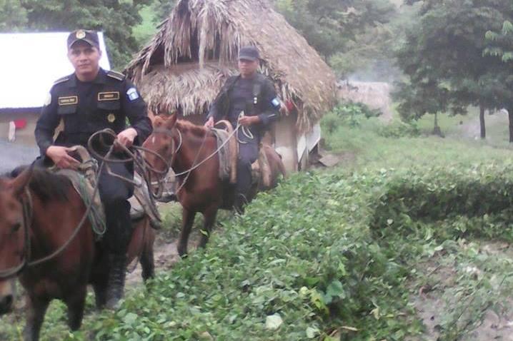 Caballos utilizados por la PNC en la aldea Xetán, Raxruhá, Alta Verapaz, son prestados por vecinos. (Foto Prensa Libre: PNC)