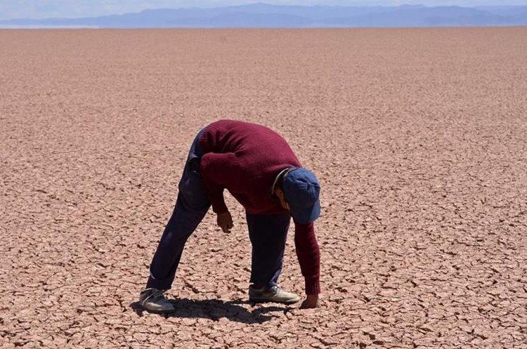 BOL05- ORURO (BOLIVIA).- 14/12/2015.- Fotografía del 11 de diciembre de 2015, de un hombre que inspecciona un sector del lago Poopó, que hoy está casi seco, en Oruro (Bolivia). El segundo lago más grande de Bolivia, el Poopó, está en un proceso de desertización en la zona andina del país debido al cambio climático, los fenómenos de El Niño y la Niña y la contaminación minera, afirmaron hoy investigadores y campesinos. EFE/CORTESIA DIARIO LA PATRIA / PROHIBIDA SU PUBLICACION EN BOLIVIA / SOLO USO EDITORIAL / NO VENTAS