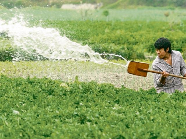 El MAGA busca rehabilitar red de sistemas de riego del país en los próximos cinco años para mejorar la productividad de los campesinos.