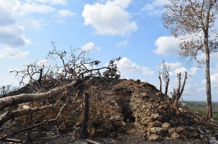 Luego de los incendios que arrasaron la zona, se logró determinar que hubo saqueo en El Peruito, que también sufrió daños por el fuego. (Foto Prensa Libre: WCS Guatemala)