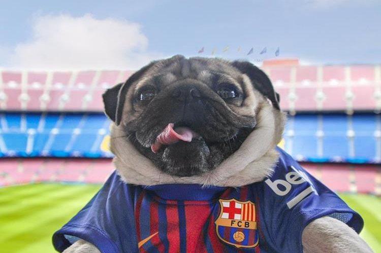 En el Camp Nou una de las fotos preferidas de los aficionados del Barcelona. (Foto Instagram)