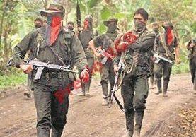 Militantes del ELN, en Colombia.
