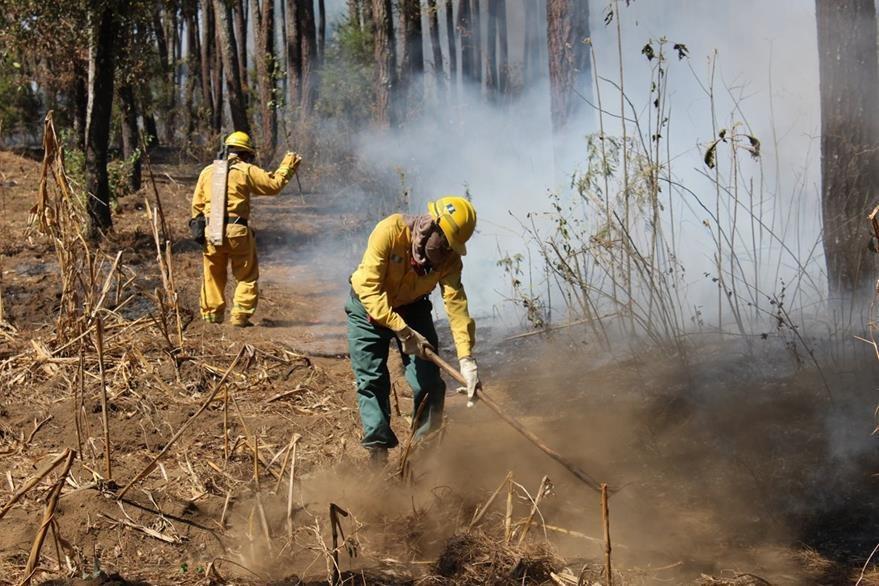 Unos 50 guarda bosques y socorristas trabajan en controlar el siniestro en un área boscosa de El Tejar, Chimaltenango. (Foto Prensa Libre: José Rosales)
