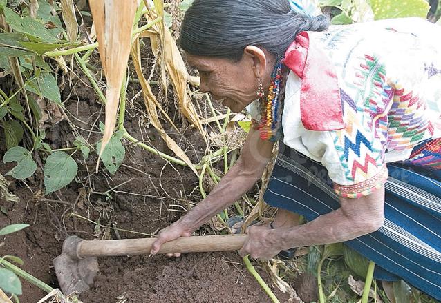La señora Pascuala Tamat extrae barro desde que tenía 6 años de edad. (Foto: Hemeroteca PL)
