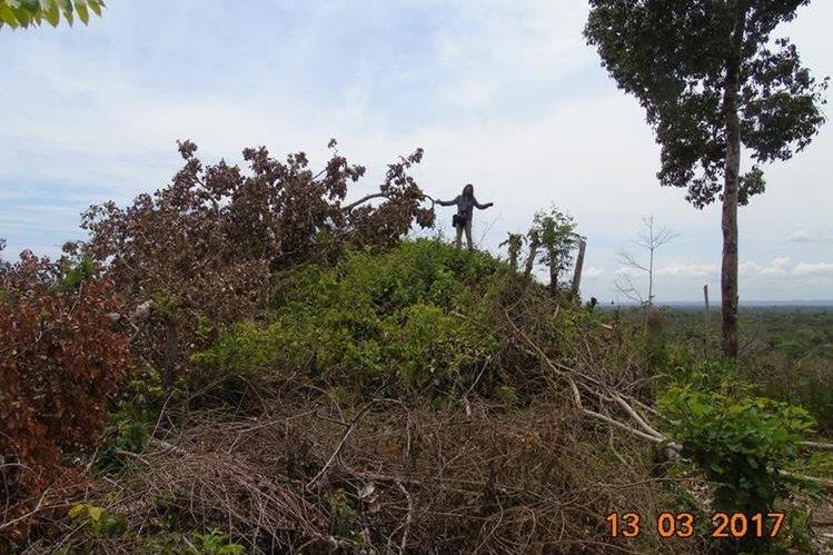 En el parque Laguna del Tigre fue descubierto recientemente el sitio arqueológico El Peruito, que tiene estructuras del periodo Clásico Tardío. (Foto Prensa Libre: WCS Guatemala)
