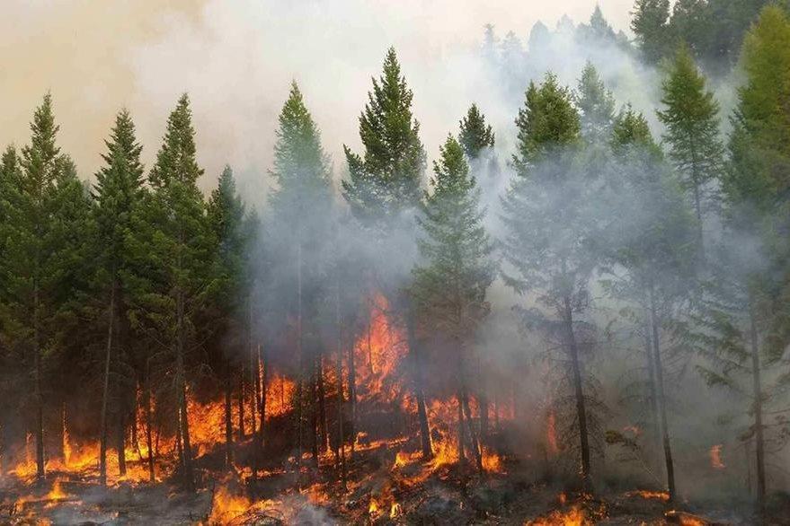 El fuego ya ha destruido 200 viviendas y amenaza 12 mil más. (Foto Prensa Libre: AFP).