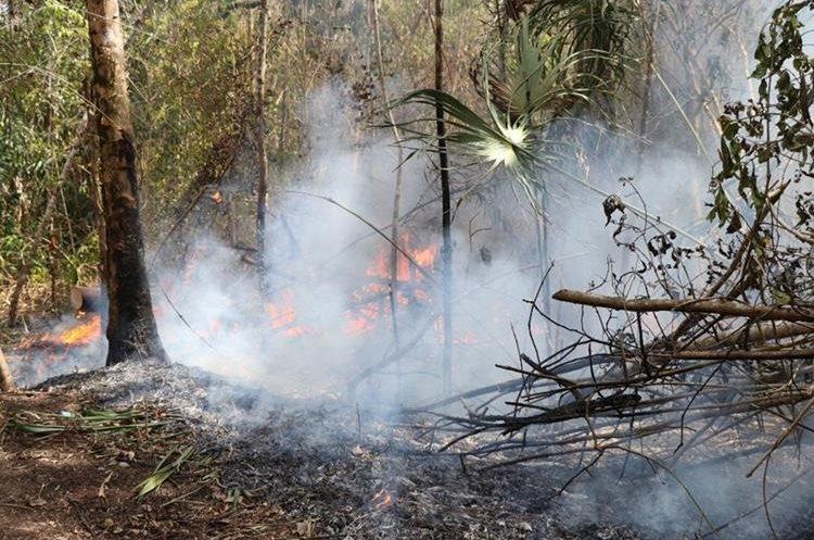 El fuego consume grandes extenciones de bosque en la Biosfera Maya, en Petén. (Foto Prensa Libre: Rigoberto Escobar)