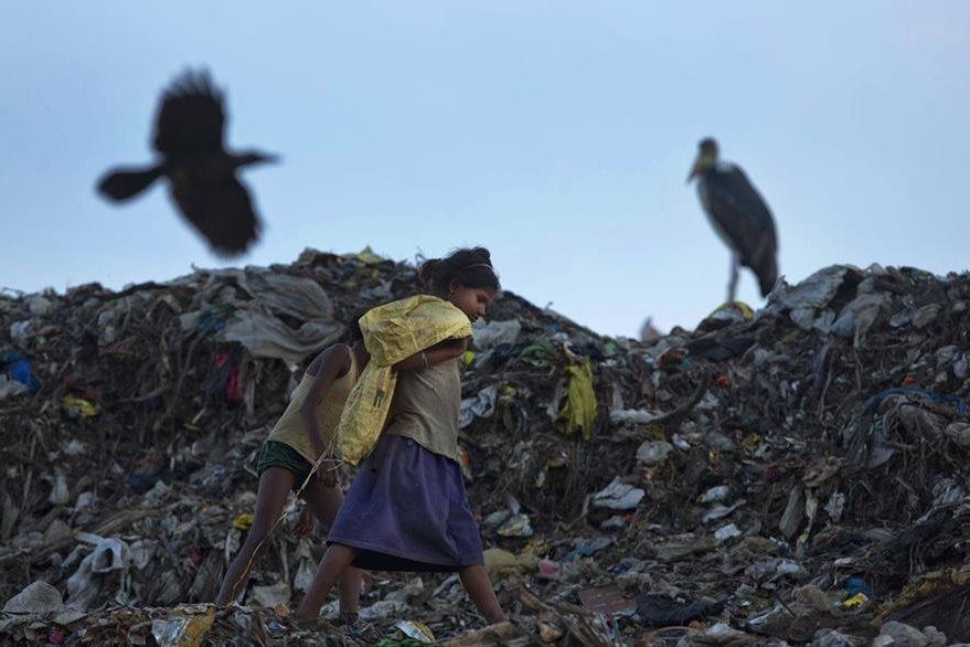 Aves de rapiña son los acompañantes de los recicladores de basura. (Foto Prensa Libre: AP).