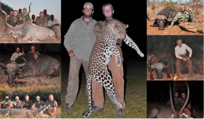 Esta no es la primera vez que se difunden imágenes de los hermanos Trump junto a cadáveres de animales salvajes. (Foto Twitter/@PamShumate).
