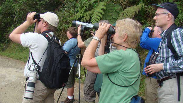 América Latina tiene el mayor número de especies de aves. Carlos Mario Wagner