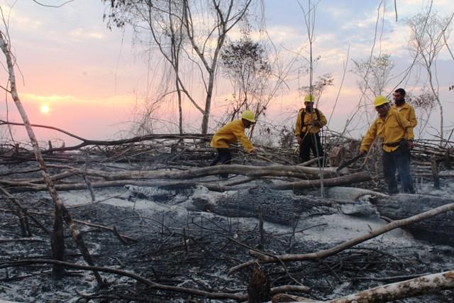 La zona arrasada por el fuego en el área Península de Tayazal, San Miguel, Flores, Petén, muestra uno de los efectos de la prolongada sequía en el departamento. (Foto Prensa Libre: Rigoberto Escobar)