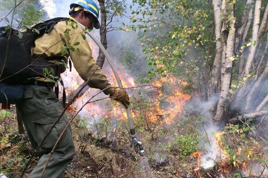 El servicio federal de bosques, confirmó que se trata de los incendios más importantes de la historia del Estado. (Foto Prensa Libre: AFP):