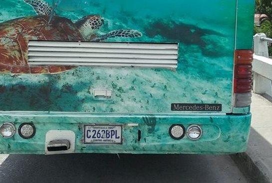 Las placas de circulación del autobús captado por internautas en Petén, está registrado por la SAT. (Foto Prensa Libre: Facebook)
