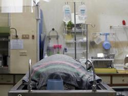 Tras una delicada operación, la tortuga tailandesa finalmente murió. (Foto Prensa Libre: EFE)