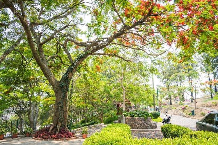 Hoy, el parque cuenta con seguridad las 24 horas por parte de la Municipalidad de la Ciudad de Guatemala. Foto Prensa Libre. Roberto Villalobos Viato.