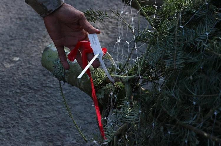 Autoridades decomisan en Chimaltenango productos de pinabete que eran trasladados sin autorización. (Foto Prensa Libre: Víctor Chamalé)