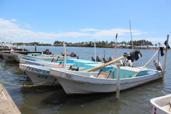Pescadores artesanales aseguran que ha bajado producción.