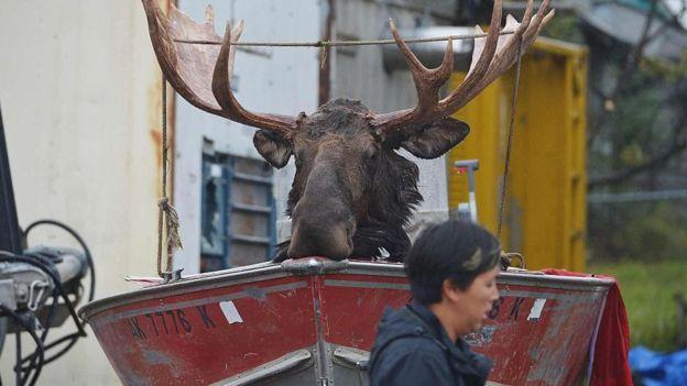 Alaska ocupa un lugar especial en la imaginación de los estadounidenses. AFP