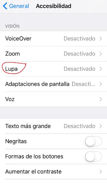 Imagen del menú de Accesibilidad, en donde aparece la opción de Lupa.