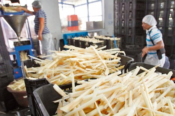 El procesamiento de conservas de frutas emplea gran cantidad de insumos.